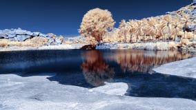 Paesaggio infrarosso nei colori falsi del lago e degli alberi vicino a Sugriv fotografie stock libere da diritti