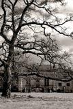 Paesaggio inglese Fotografie Stock Libere da Diritti