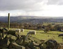 Paesaggio inglese Fotografia Stock Libera da Diritti