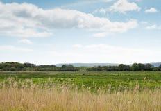 Paesaggio inglese della campagna Immagine Stock