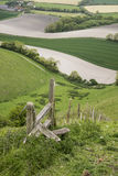 Paesaggio inglese di rotolamento della campagna nella mattina di primavera Fotografia Stock