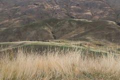 Paesaggio intorno al passaggio di Lindis, isola del sud del ` s della Nuova Zelanda Fotografia Stock