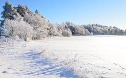 Disegno invernale immagine stock libera da diritti for Paesaggio invernale disegno