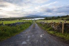 Paesaggio Irlanda della strada del Lough Fotografia Stock