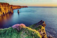 Paesaggio irlandese scenico della campagna di bello stile d'annata dalle scogliere di moher in Irlanda Fotografia Stock