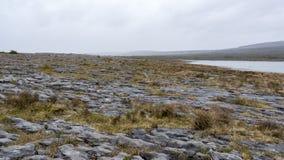 Paesaggio irregolare di Burren in Irlanda Fotografia Stock