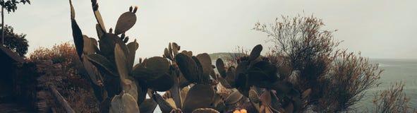 Paesaggio in ischi, Italia Immagini Stock