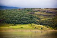 Paesaggio islandese della natura Fotografie Stock Libere da Diritti