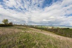 Paesaggio italiano con le foreste ed il prato Fotografia Stock