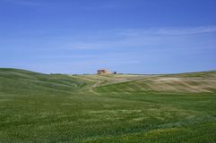 Paesaggio italiano in Toscana Fotografia Stock
