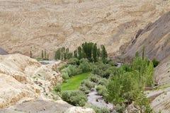 Paesaggio in Ladakh, India Immagini Stock Libere da Diritti