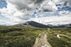 Paesaggio in Lapponia, Svezia Fotografia Stock Libera da Diritti