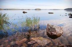 Paesaggio litoraneo con il carice e le pietre fotografie stock libere da diritti