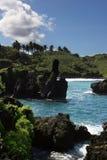 Paesaggio litoraneo hawaiano Immagine Stock