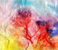 Paesaggio luminoso dell'acquerello con gli alberi Immagini Stock Libere da Diritti