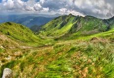 Paesaggio luminoso della montagna dell'alpe con le nuvole e l'erba verde Immagini Stock