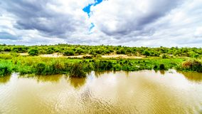 Paesaggio lungo il fiume di Olifants vicino al parco nazionale di Kruger nel Sudafrica Immagini Stock