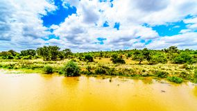 Paesaggio lungo il fiume di Olifants vicino al parco nazionale di Kruger nel Sudafrica Fotografie Stock Libere da Diritti