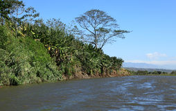Paesaggio lungo il fiume di Tarcoles Fotografie Stock