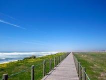 Paesaggio lungo la strada di pellegrinaggio di Saint James, Portoghese di Camino, Portogallo della primavera immagine stock libera da diritti