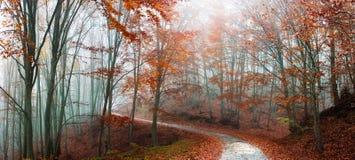 Paesaggio maestoso di autunno Immagini Stock Libere da Diritti