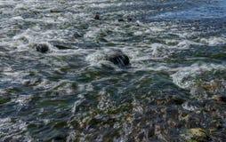 Paesaggio magico della foresta pluviale e del fiume con le rocce fotografie stock libere da diritti