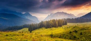 Paesaggio magico della montagna Fotografie Stock Libere da Diritti