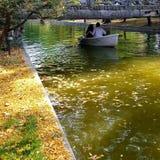 Paesaggio magico di autunno Fotografia Stock