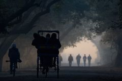 Paesaggio magico di Bharatpur Fotografie Stock Libere da Diritti