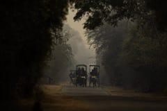 Paesaggio magico di Bharatpur Fotografie Stock