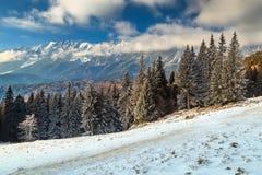 Paesaggio magico di inverno ed alte montagne nevose, Carpathians, Romania, Europa Fotografie Stock