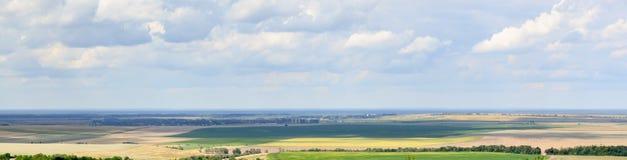 Paesaggio meraviglioso della natura di estate con cielo blu, campi verdi e gialli, linee verdi rare della foresta e luce solare i Immagini Stock Libere da Diritti