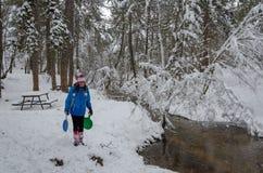Paesaggio meraviglioso di inverno The Creek e gli alberi sono coperti di neve immagini stock
