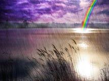 Paesaggio misterioso della riva del lago durante la pioggia Fotografie Stock Libere da Diritti