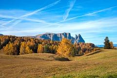 Paesaggio mistico di autunno con il larice giallo in Alpe di Siusi nella t Immagini Stock