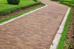 Paesaggio moderno del giardino ornamentale con PA piastrellato del mosaico di Colofulr fotografia stock libera da diritti