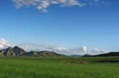 Paesaggio mongolo Immagini Stock Libere da Diritti