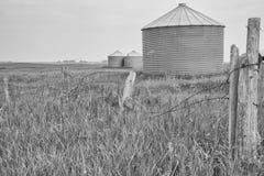 Paesaggio monocromatico del silo di grano Immagine Stock