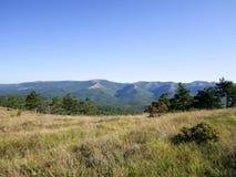 Paesaggio in montagne Immagine Stock