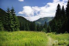 Paesaggio in montagne di Tatra Immagine Stock