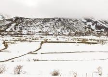Paesaggio montagnoso con neve Fotografia Stock