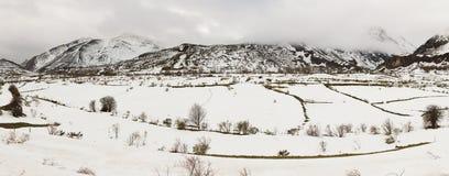 Paesaggio montagnoso di panorama con neve Immagini Stock
