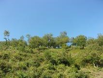 Paesaggio-montano Stockbilder
