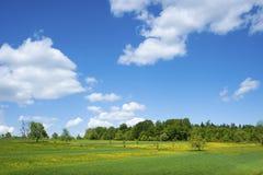 Paesaggio a Moosbronn Fotografie Stock