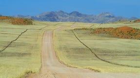 Paesaggio namibiano Fotografie Stock Libere da Diritti