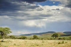Paesaggio namibiano Immagini Stock Libere da Diritti