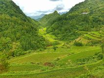 Paesaggio & natura della Cina fotografia stock libera da diritti