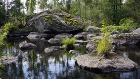 Paesaggio, natura, estate, ritratto, Fotografie Stock