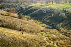 Paesaggio naturale fotografia stock libera da diritti