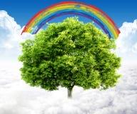 Paesaggio naturale. concetto ecologico Immagini Stock